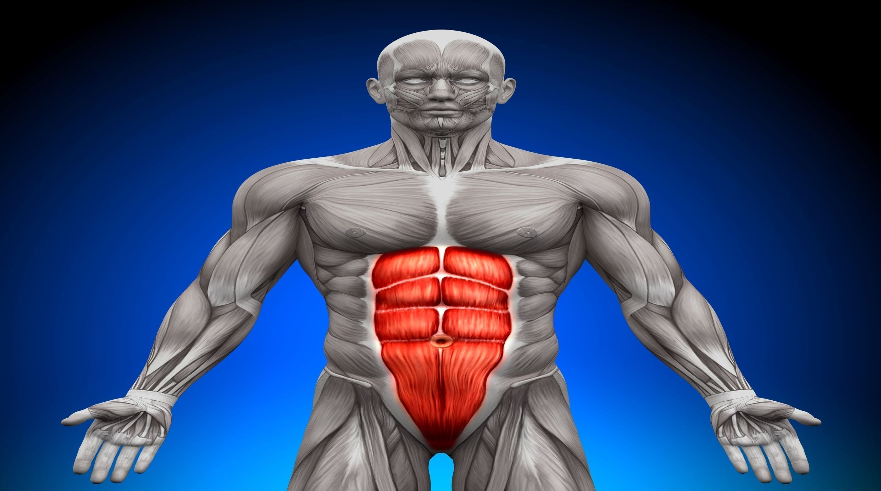 A Brain Based Approach to Core Stabilization