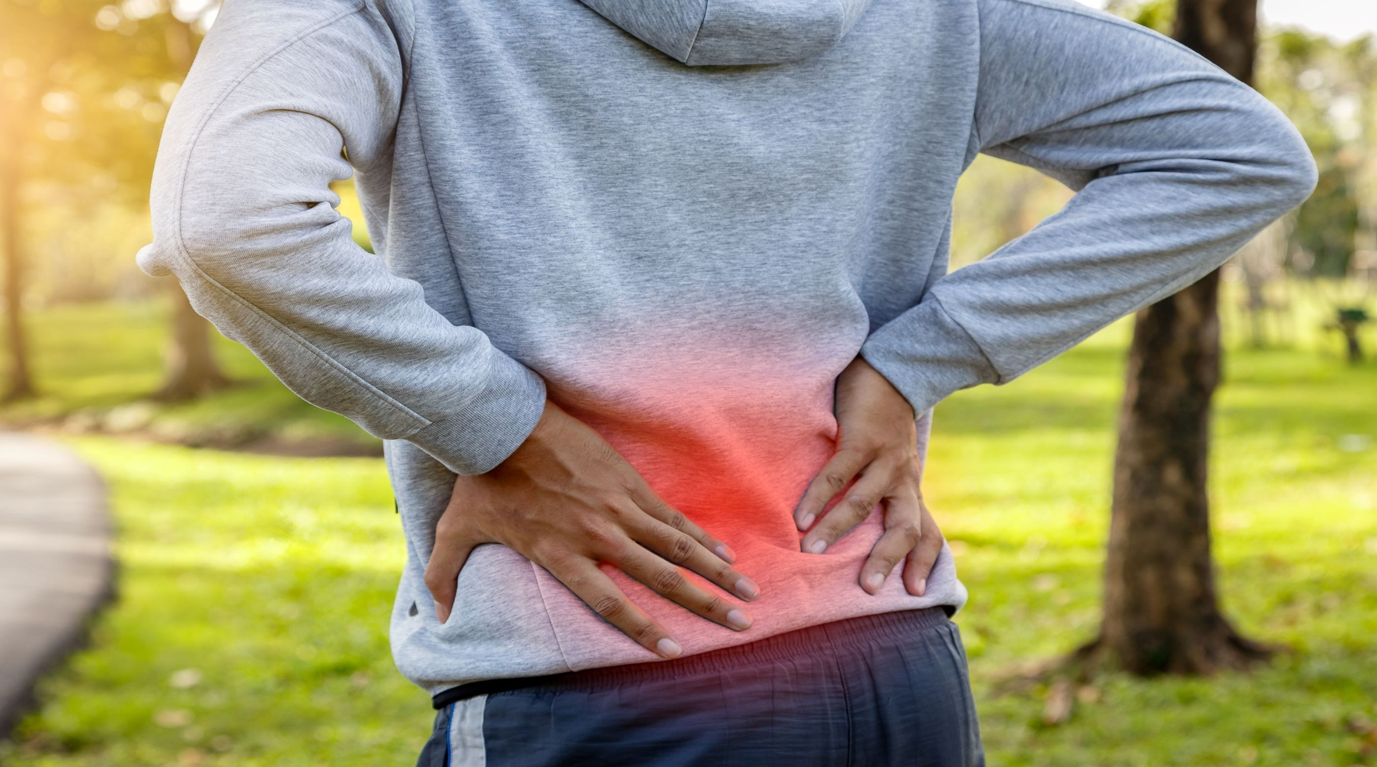 Part 1: Introduction to a Brain Based Approach to Low Back Pain